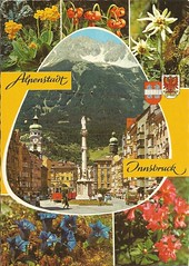 Alpenstadt Innsbruck (janetdmorris) Tags: travel family vacation vintage souvenirs europe european grandparents postcards mamama dadada