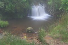 Parque natural de #Gorbeia #Orozko #DePaseoConLarri #Flickr -105 (Jose Asensio Larrinaga (Larri) Larri1276) Tags: 2016 parquenatural gorbeia naturaleza bizkaia orozko euskalherria basquecountry