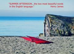 AHHHH. (France-) Tags: kite canada vancouver log eau bc plage mots cerfvolant