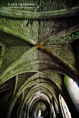 Fountains Abbey (ScudMonkey) Tags: abstract texture abbey stone canon sigma ceiling 12mm fountainsabbey nationaltrust cistercian cellar northyorkshire 6d ripon uwa studleyroyal 1224mmf45exdg c2016paulbradley