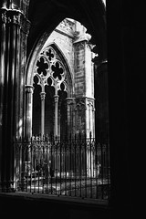 Catedral Santa Eulalia,  Barcelona (Barbara Larsen) Tags: barcelona art blancoynegro architecture canon blackwhite spain gothic streetphotography catedral oldbuildings streetphoto catalunya blackandwhitephotography gothicstyle santaeulalia vsco