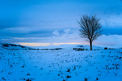 NSD_1776 (Nazgul 9) Tags: winter snow wales landscape south brecon beacons