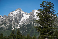 DSC02874 (pezlud) Tags: tetons landscape national park nationalpark tetonnationalpark snowcapped mountains grandtetonnationalpark
