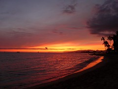 Tipped with red ... (abbietabbie) Tags: sunset red sea sun tree beach hawaii waikiki palm