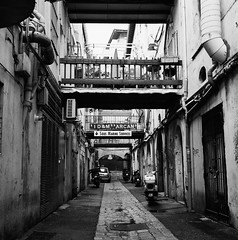 Alley to Theatre (Purple Field) Tags: street bw france 120 6x6 tlr film monochrome analog rolleiflex square marseille alley kodak trix 400tx medium   f28  schneider kreuznach 80mm    28f xenotar         stphotographia x