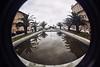 Viareggio Fish #2 (guido.masi) Tags: film lomo fisheye palma fontana viareggio riflesso pellicola guidomasi guidomasicarbonmadecom