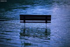 Flood (Mariano Tais) Tags: lake canon lago flood alluvione di alta acqua alto 135l caldonazzo lagodicaldonazzo canon135mm caldonazzosee 5dii canon5dii lakecaldonazzo