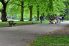 Park Life II (Stephen Whittaker) Tags: park people dog man tree bench parents nikon women child path grand parent d5100 whitto27
