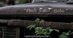 Pauls Babe 1 (westcoastcaptures) Tags: rust nik junkyard hdr za135 sonya99