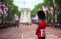 Soldier Lining the Route of the Queen's Birthday Parade in London (Defence Images) Tags: birthday uk man colour male london soldier army military ceremony free parade british defense defence personnel trooping nonidentifiable