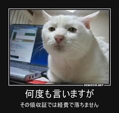何度も言いますが その領収証では経費で落ちません (Demochi.Net) Tags: life cute sexy japan fun japanese motivator culture 日本 ペット 猫 demotivator 金 家族 結婚 ゲイ 女 子供 おっぱい 愛犬 政治 社会 巨乳 文化 眼鏡 教育 demotivators 経済 女性 初恋 r18 女子 カップル 子猫 女装 お笑い motivators 会社 少子化 企業 ユーモア 恋 悪い 格差 風刺 一言 デモチ 大喜利