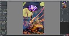 Creating Presets from Scratch (Darcy.Wheeler89) Tags: flower nature water photography photo lily interface software user editing topaz restyle topazrestyle