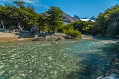 Degelo (mcvmjr1971) Tags: travel parque argentina roy d50 los nikon el nacional fitz chalten glaciares