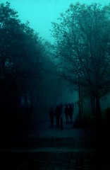 Path to the Bus Loop (jvde) Tags: 3570mmf3345nikkor burnaby coolscan film nikon nikonfe sfu gimp