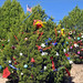Trees_of_Loop_360_2013_208