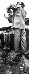 Fishing trip with Jim Newton,Devon (Laura Parry-Davies) Tags: ocean trip sea blackandwhite fish man laura men beer photography shark boat blackwhite fishing fisherman media fishermen stock devon stockphotos convergence catch fishingboat jimnewton convergencemedia parrydavies lauraparrydavies