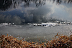 riveredge (SRSteck) Tags: trees winter light abstract reflection nature water river landscape outdoors mirror frozen environment dreamscape sophiasteck