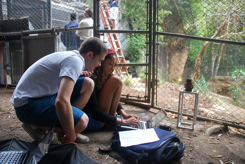 Camera Trap Team at San Diego Zoo