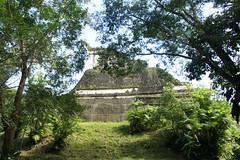 Tikal, Guatemala, January 2014