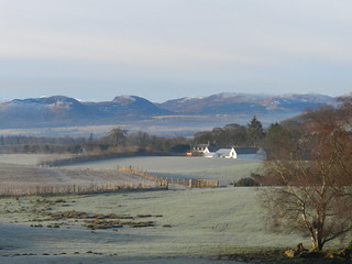 Frosty Morning, near Conon Bridge, Black Isle, Scotland, January 2014, Explored