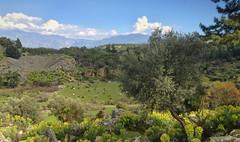 Pnara (VillaRhapsody) Tags: landscape roman historical fethiye lycian preroman pnara amphytheater