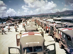 View of military ambulances lined up on shore at Guam, awaiting the arrival of the USS Solace with casualties from Okinawa, June 1945.