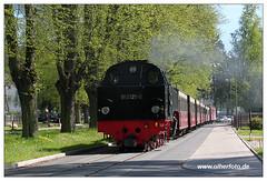 Molli 005 (olherfoto) Tags: railroad train eisenbahn rail railway trains steam bahn steamtrain narrowgauge dampflok molli dampfzug schmalspurbahn