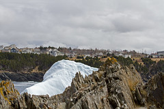 towering up (gordjohnson) Tags: ocean trees canada cold ice water berg newfoundland rocky land chilly whire torbay tapperscove