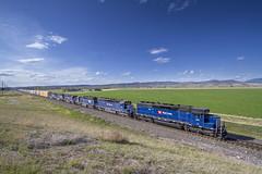 Sixsome of SD45s (MRL 390) Tags: railroad train montana manhattan freight bnsf mrl freighttrain sd45 emd bnsfrailway sd452 montanaraillink manhattanmontana manifestfreight emdsd45 mrl2ndsubdivision mrlsd45 montanaraillink2ndsubdivision bnsfmanifestfreight mrl382