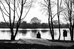 Tree, Man, Trashbin - Baum, Mann, Mlleimer (RevolTee) Tags: white man black tree water river wasser mann bremen weser 1855 fluss mlleimer baum trashbin weserstadion schwarzweis osterdeich