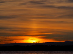 Skies (Jens Haggren) Tags: sunset sea summer sky sun water birds boat skies olympus omd em10