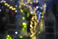 shop window bokeh 6/52 (auroradawn61) Tags: uk winter england nikon bokeh dusk dorset shopwindow colourful february swanage purbeck lateafternoon britishseaside outofseason week6 2015 seasidetown 52weeks sooc 52weeksin2015project 52weeksin2015