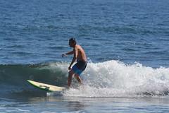 DSC_0084 (aliciadesign) Tags: surf whales bigisland honolii