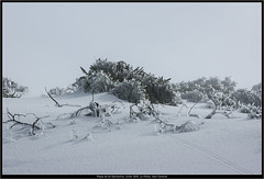 Roque de los Muchachos, winter 2005, La Palma, Islas Canarias (Dierk Topp) Tags: schnee winter snow mountains ice fog clouds nikond70 himmel wolken roque lapalma roquedelosmuchachos
