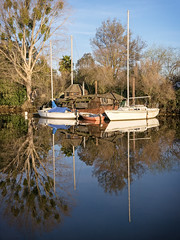 All tied up. (Michael Brooking Photography) Tags: blue trees reflection water reflections boats mirror sail michaelbrookingphotography