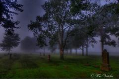 Peaceful (Tim @ Photovisions) Tags: trees sunset sky sun cemetery fog sunrise nebraska beatrice gageco