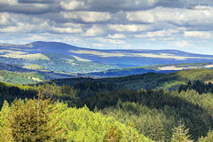 From the Queen Elizabeth Forest Drive (dobienet) Tags: scotland forestry hills trossachs