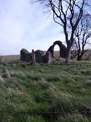 2016-05-05 11.05.05 (pamelaadam) Tags: digital phonecam scotland spring aberdeenshire may fotolog 2016 collieston thebiggestgroup