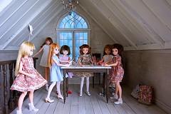 Secret Project💕 (cute-little-dolls) Tags: toy miniature doll furniture rement dollhouse sekiguchi momoko petworks ruruko