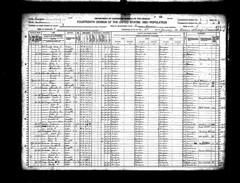1920 George Washington Mercier  Madison Co age 58 (Valrico Runner) Tags: county georgia george washington mary madison mollie lou simmons mercier 1920 census