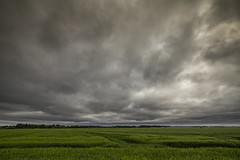 No. 1059 Heavy clouds (H-L-Andersen) Tags: nature rural canon denmark landscapes farming dk wa crofts cloudscapes samyang canon6d samyang14mm