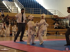 stefanou_15_5_2016_knockdown_121