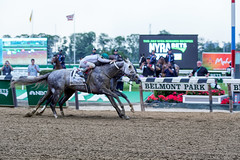 Creator and Destin down to the wire (southpaw captures) Tags: belmont jr creator destin ortiz stakes 2016 belmontstakes irad