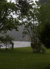 IMG_8677.CR2 (jalexartis) Tags: trees rain spring gloomy calm rainy reflective gloom ilikerain ilikegloomy