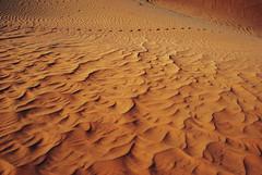 one walk on the Mars... (rasa@1975) Tags: travel shadow art texture colors outdoors sand nikon flickr serbia safari explore abudhabi nikkor lightshadow caffe artland lightroom twop srbija lessismore 365dayproject artristic naturesoul emiraths