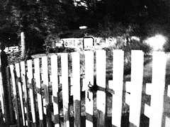 House gate posterized (gregarch2) Tags: white house black night fence gate posterized khi