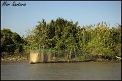 Redes (Mar Santorio) Tags: red net rio d50 river fishing nikon vietnam pesca saigon mekong hochiminh