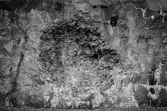 MMK_7021 (M.N. van der Kolk) Tags: ss firstworldwar concentrationcamp secondworldwar willebroek prisoners breendonk werkkamp eerstewereldoorlog tweedewereldoorlog gevangenen fortvanbreendonk doorgangskamp nazisnazis