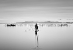Kiri (Loscar Numael) Tags: longexposure blackandwhite lake japan fog gallery decor minimalist walldecor fishingnets travelphotography lakebiwa neutraldensity singhray morslo