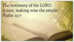 Psalm 19:7 (joshtinpowers) Tags: bible psalms scripture